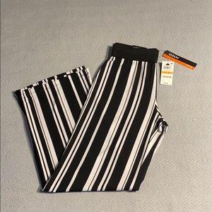 Women's Alfani petite pants